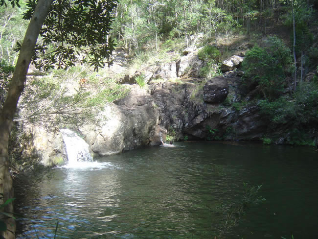 Mt Mee State Forest, Qld 2009